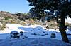201212yuki_19